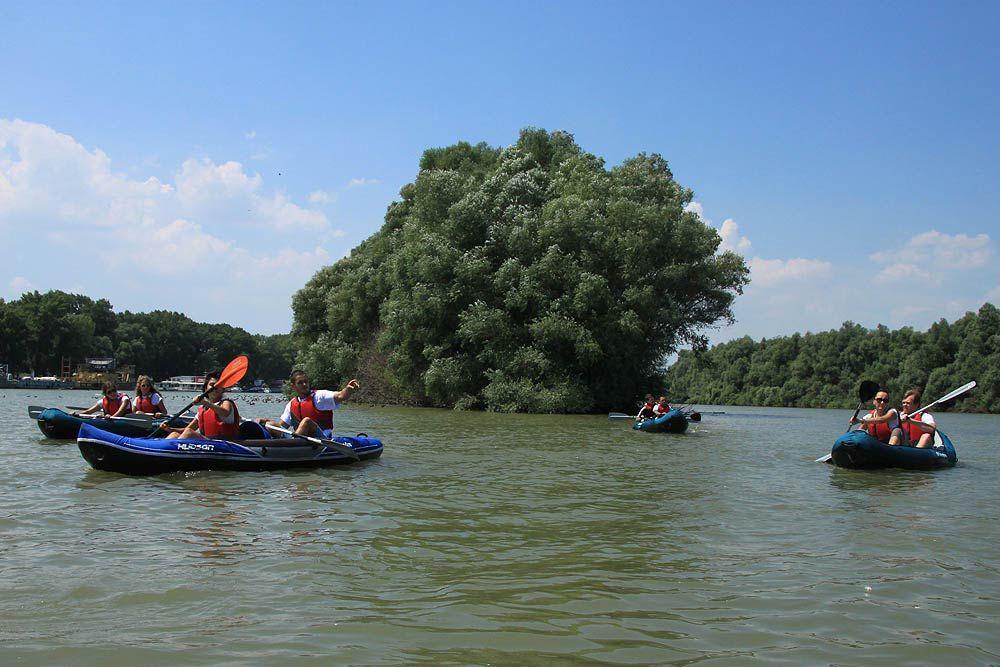war_island_kayak_belgrade16